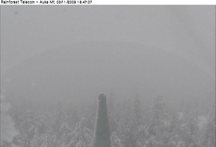Rainforest Telecom Auke Mountain WebCams South Shelter